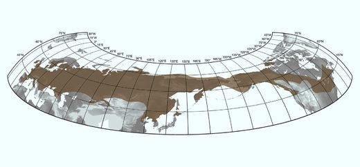 Максимальное распространение шерстистых мамонтов в позднем плейстоцене