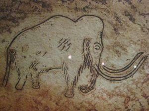 Наскальный рисунок мамонта в пещере Руффиньяк